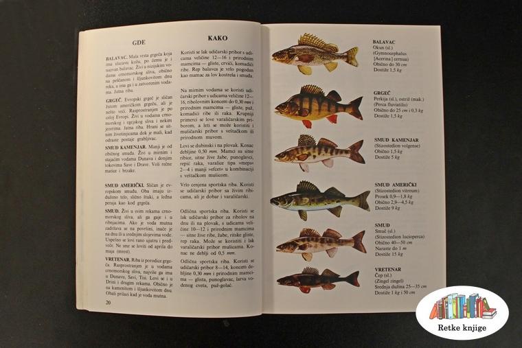 opis i slike riba