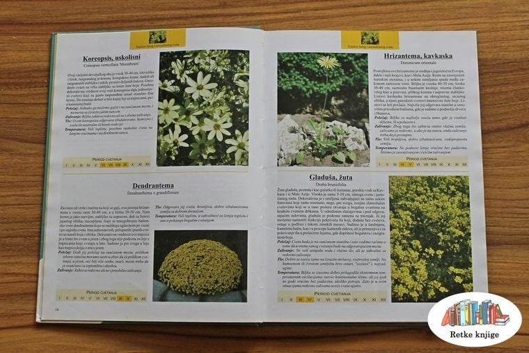 Predstavljanje nekoliko biljaka