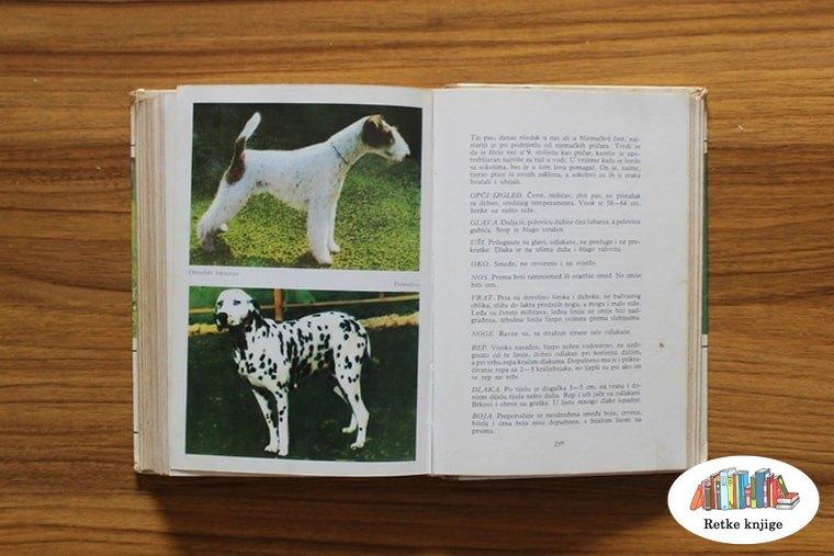Prikaz foksterijera i dalmatinca