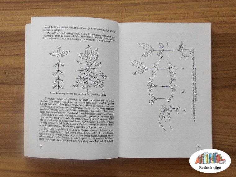 Prikaz korenovog sistema biljaka u knjizi