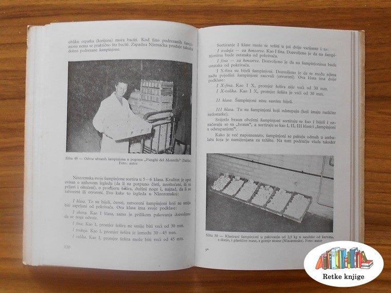 berba i pakovanje šampinjona slike u knjizi