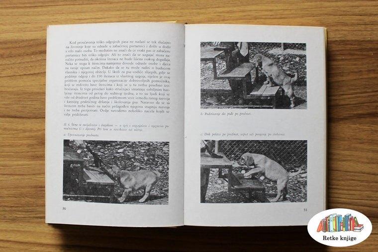 Osnovna obuka šteneta za savlađivanje preporuka
