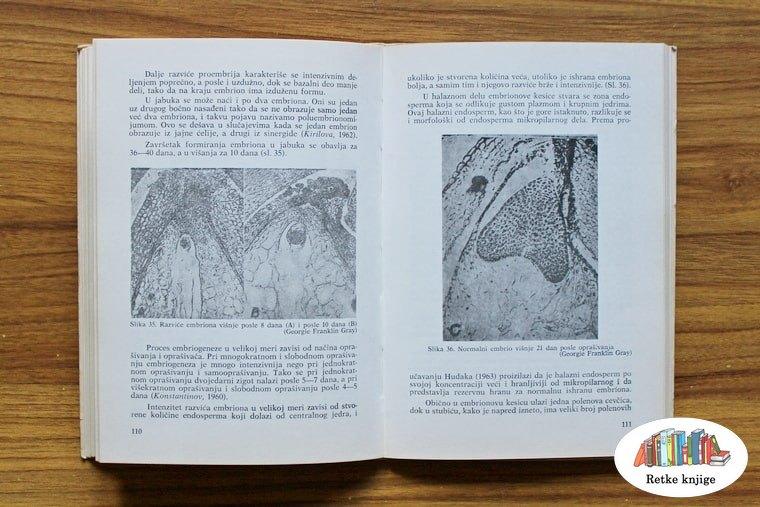 Fotografije mikroskopskih slika polena