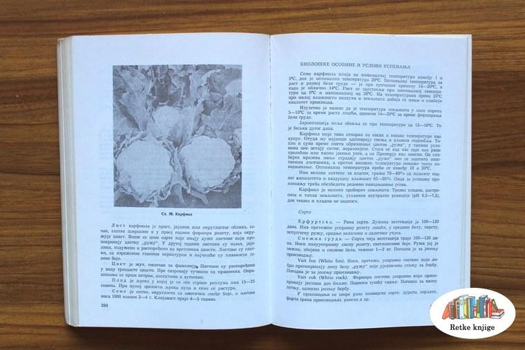 Deo posvećen proizvodnji karfiola