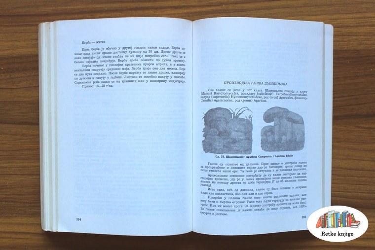 Deo knjige gde se piše o uzgoju pečuraka