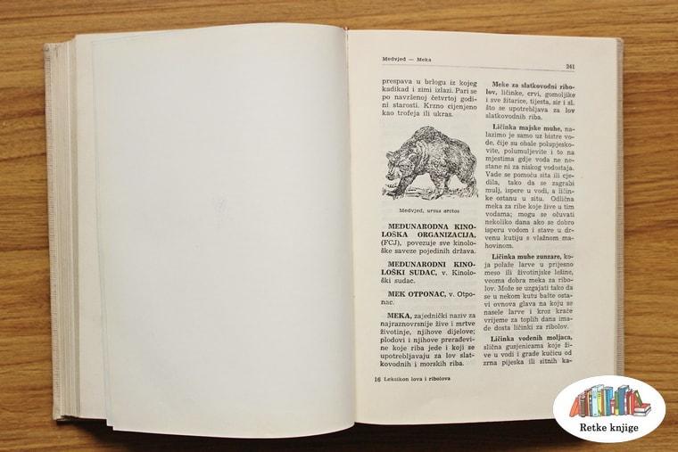opis medveda