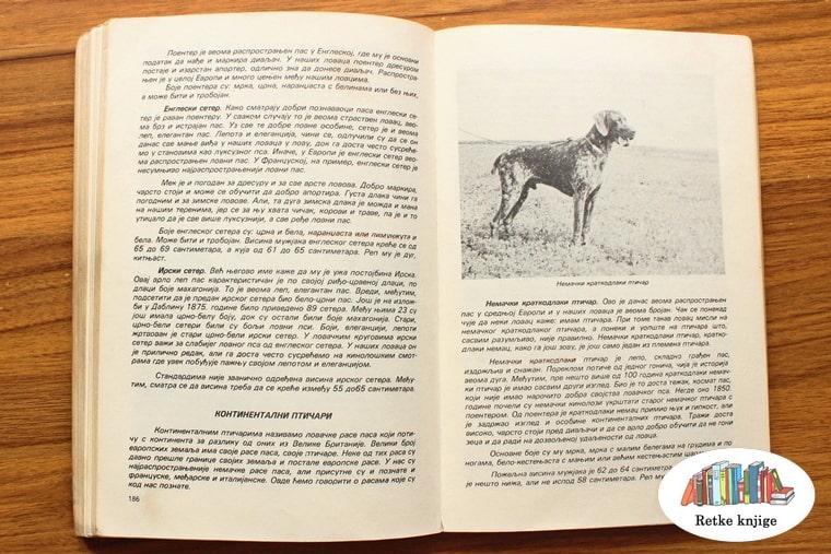 prikaz  i opis nemačkog kratkodlakog ptičara