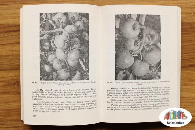 Predstavljanje paradajza