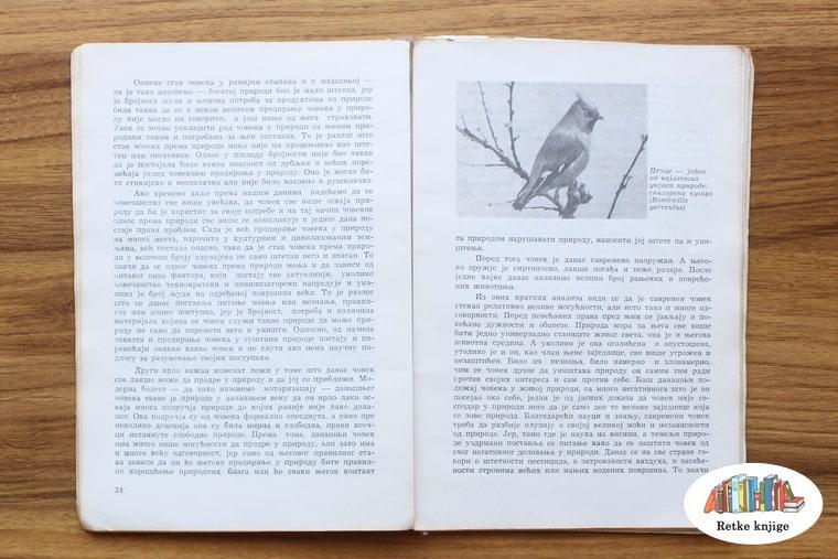 prikaz preparirane ptice i opis postupka