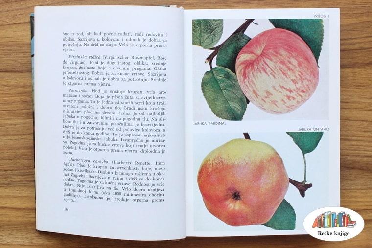 prikaz slika jabuka