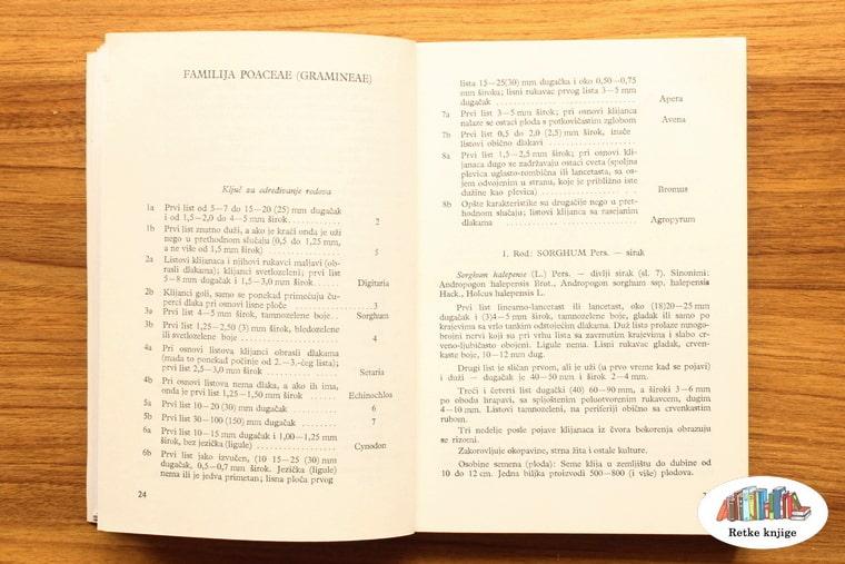 poglavlje o Familija Polygonaceae