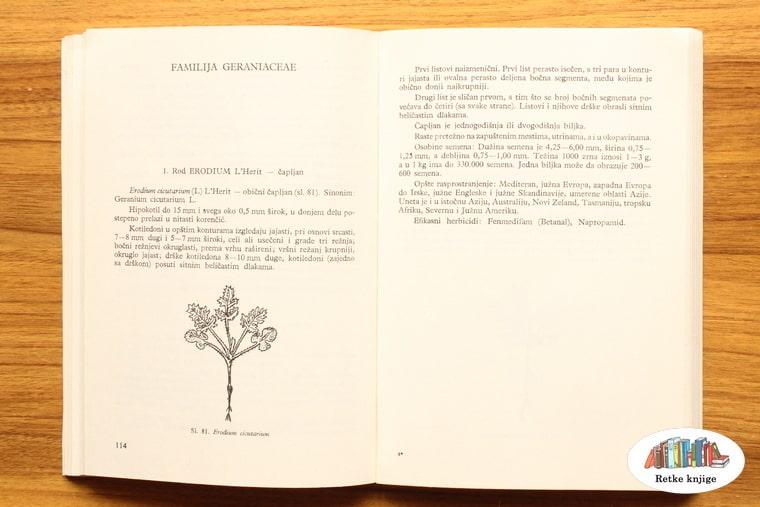 prikaz biljke čapljan