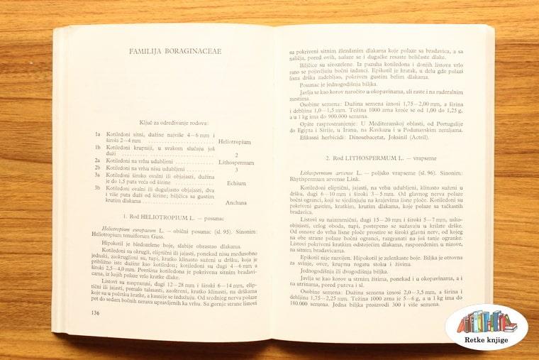 poglavlje o Familija Boraginaceae