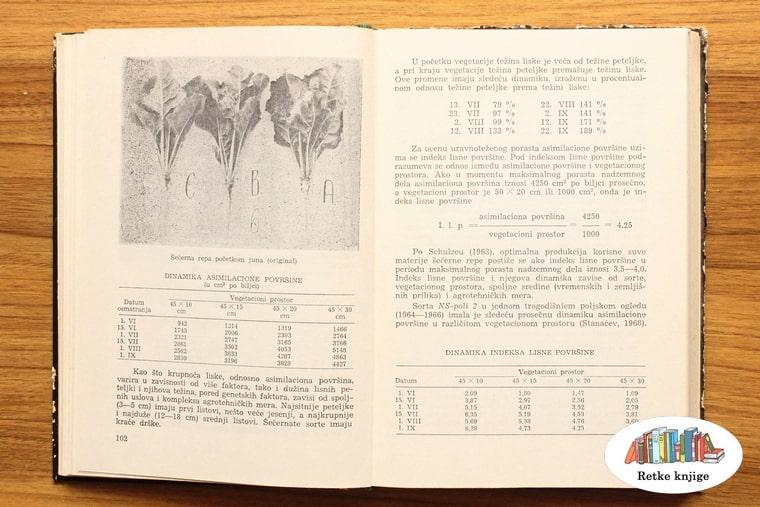 prikaz listova repe i opis