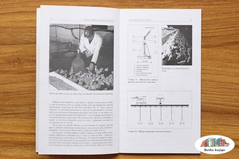 prikaz pregleda guščića i opis osnove selekcije