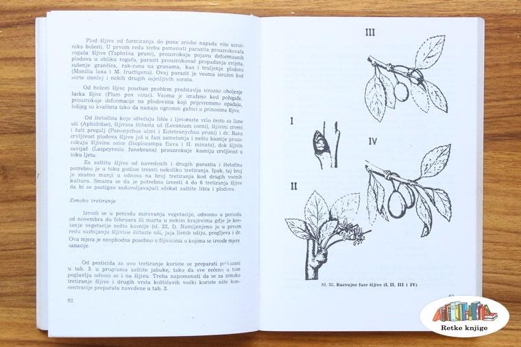 prikaz razvoja šljive i opisom prskanja