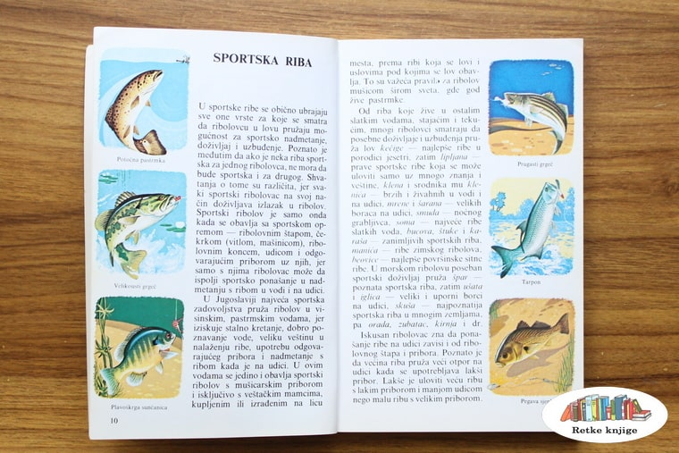 opis koje su sportske ribe