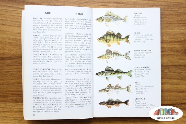 opis nekih rečnih riba