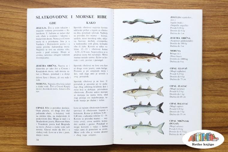 opis morskih riba