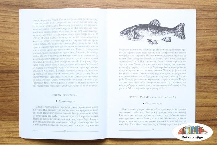 prikaz i opis linjaka