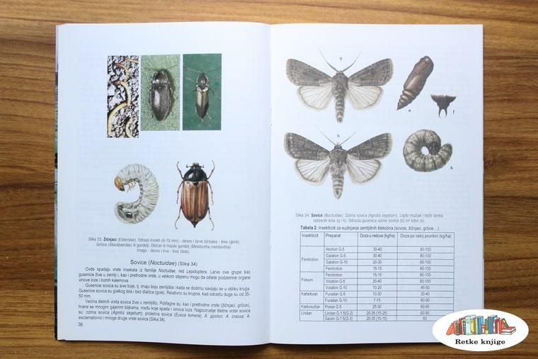 slike štetnih insekata